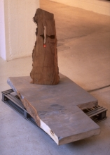 Raft:wood, galvanised steel, metallic paint, neon,1992