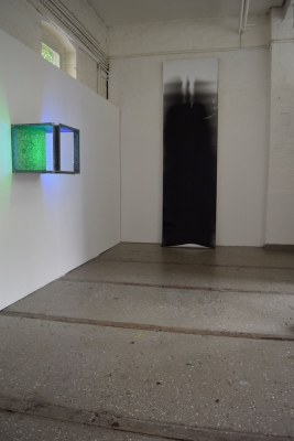 Lowered Light #12 and Parapet: Pass Projects 2016